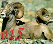 наступающий год козы