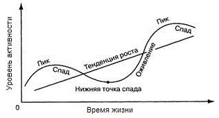 цикличность развития
